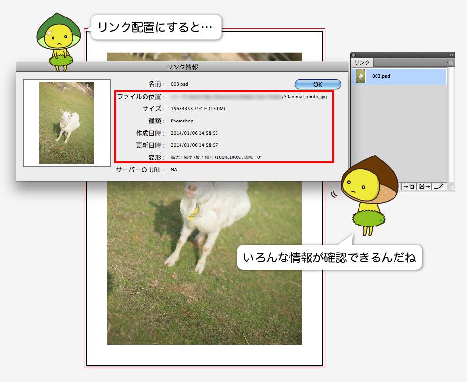 Illustratorでリンク配置された画像の情報を確認している画像