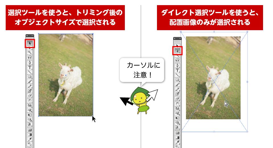 マスクされたオブジェクトを選択ツールで選択すると、トリミング後のサイズで選択される。ダイレクト選択ツールで選択すると、配置画像自体のサイズで選択される。